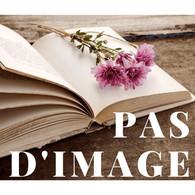 Les Chouans - History