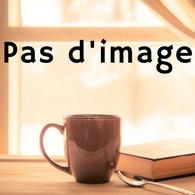 Annales Histoire Sciences Sociales 56e Année N°3 Mémiores Urbaines - History