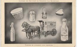 Laiterie Des Bruyères De Schooten Par Brasschaet - Levering Met Producten - Kaart Uit Een Boekje - Schoten
