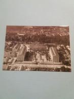 (J4) Militaria :  Légion étrangère à Travers La Carte Postale - Quartier Viénot - Sidi-bel-Abbès - Characters