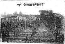 SAINT LOUBES Domaine De Badhail Surcharhe Vve Charles Arnaud - Bordeaux