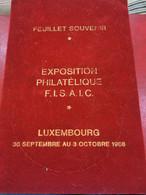 Feuillet Souvenir, Exposition Philatélique. Luxembourg 1966 - Non Classés