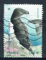 France, Oiseau, Pingouin Torda (Alca Torda), 2021, Obl, TB - Used Stamps