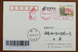 China 2020 Lantian Ape-Man Homo Erectus Fossil Relic Site Meter Franking Machine Commemorative PMK 1st Day Used On Card - Archéologie