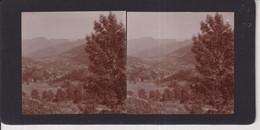 COL DE PORTEL PYRENEES FRANCE +-17*9CM ESTEREOSCOPICA STEREOSCOPIC Francestereo - Fotos Estereoscópicas