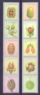 Belgie - 2021 - ** Herfstige Boomvruchten - 015 Grove Den / 020 Plantaan - Unused Stamps