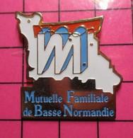 319 Pin's Pins / Beau Et Rare / THEME : MARQUES / MFBN MUTUELLE FAMILIALE DE BASSE NORMANDIE - Marche