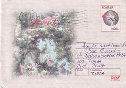 A9725- CUPIDON ANGEL LOVE COUPLE ROMANIA COVER STATIONERY CLUJ 2003 - Postal Stationery
