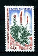 TAAF - 48 - 45F  Chou De Kerguelen - Neuf N** - Très Beau. - Neufs