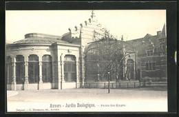 AK Anvers, Jardin Zoologique, Palais Des Singes, Zoo - Unclassified