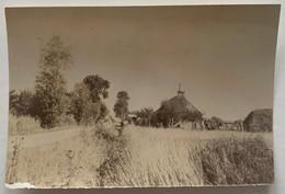 Vue De Varaville (Calvados). Normandie. Circa 1900. - Plaatsen