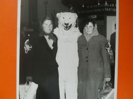 Photo Originale - Ours Blanc Polaire - Eisbär - Polar Bear - FEMME - Déguisement  Mascotte Leipzig ? ALLEMAGNE ? En 1955 - Anonymous Persons