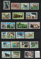 Monaco  - Yvert 722, 816, 862, 880, 963, 1051, 1093, 1163, 1232, Etc. - 22 Chiens Neufs SANS Charnière - MNH Dogs - Collections, Lots & Series