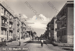 CARTOLINA  JESI,ANCONA,MARCHE,VIA RAFFAELLO SANZIO,STORIA,CULTURA,RELIGIONE,IMPERO ROMANO.ANIMATA,VIAGGIATA 1957 - Ancona