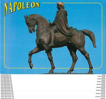 Photo Cpsm Cpm 20 AJACCIO. Statue Napoléon - Ajaccio