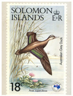 (SS 20)  Solomon Islands - AUSIPEX 884 Melbourne Stamp Show - Show's 18 Cents Bird Stamp - Uccelli
