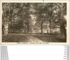 91 SENART. La Forêt. Carrefour De La Mare Aux Canes - Sénart