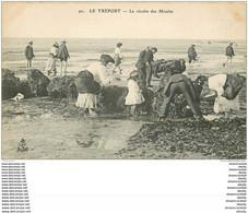 76 LE TREPORT. La Récolte Des Moules. Poissons Et Crustacés. Pêcheurs Métiers De La Mer - Le Treport