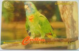 Dominica 225CDMA Amazona Aurausica (Jaco Parrott) - Dominica