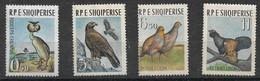 ALBANIA 1963 BIRDS MNH - Autres