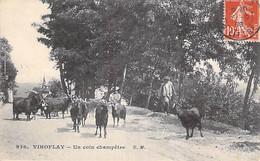 AGRICULTURE Elevage - 78 - VIROFLAY : Un Coin Champêtre ( Troupeau De Chêvre Et Son Bouc ) CPA - Yveline (Paysans ) - Veeteelt