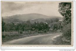 POIL Près De Larochemillay - Le Mont Beuvray -1950- Format 9 X 14 - Otros Municipios