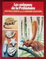 """LA VIE PRIVEE DES ANIMAUX """"Les Animaux De La Préhistoire"""" - RINALDO D. D'AMI - HACHETTE 1984 - Hachette"""