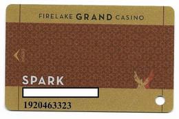 Firelake Casino, Shawnee, OK, U.S.A. Older Used Slot Or Players Card, # Firelake-2 - Casino Cards