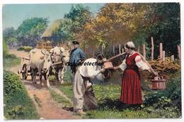 Les Typs Et Les Vues Du Ukraina, Typen Aus Der Ukraine, Alte Postkarte - Europa