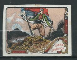 Rare : 1 VIGNETTE DELANDRE Régimentaire Guerre WWI WW1 Cinderellas Poster Stamps 1914 1918 - Military Heritage