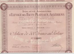 105-Société Anonyme D'Elevage Des Hauts-Plateaux..Alger...Algérie Période Coloniale..1929 - Other