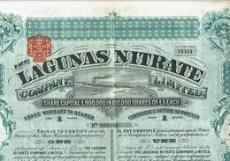 GB. LAGUNAS NITRATE CY LTD. THE ... - Other