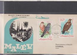 Ungarn Michel Cat.No. FFC 1960 Budapest - Luxemburg - Brieven En Documenten