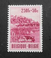 1953 : Cob 921* : Citadelle De Namur  ( Charnière D7) Voir Verso - Ungebraucht