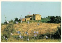 TERRE DI SIENA VIAGGIATA + Annullo - Siena