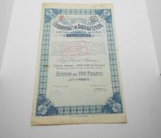 """Action De 100 Francs  """" Charbonnages Du Borinage Central """" Paturages (Belgique) 1918 Avec Tous Les Coupons. N°8997 - Mines"""