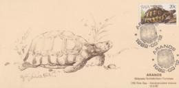 Carte  Maximum  1er  Jour    SWA  -  SUD  OUEST   AFRICAIN    TORTUE    1982 - Turtles