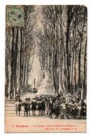 Carte Postale Ancienne - Circulé - Dép. 66 - PERPIGNAN - Le Square, Promenade Des Platanes - Perpignan