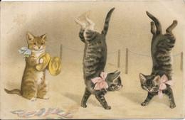 THEME ANIMAUX.Chats - Gatos