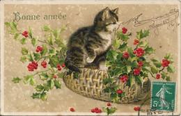 THEME ANIMAUX.Chat. - Katten