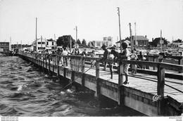 AB. Photo Cpsm 85 FROMENTINE. Estacade 1953 - Saint Jean De Monts