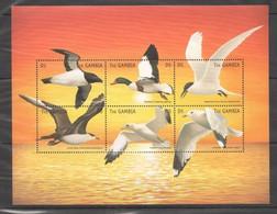 PK124 GAMBIA FAUNA BIRDS 1KB MNH - Albatros