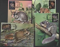 Weissrussland / Belarus / Biélorussie /BIAŁORUŚ 2021 MI.1403-06**,MA.1408-11,YVERT.. Fauna. Rodents MNH ** MAXICARDS - Belarus