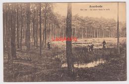AVERBODE - HET VEN - Scherpenheuvel-Zichem