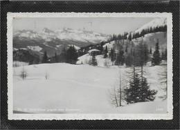 AK 0740  Tauplitz - Th. K. Holl-Haus Gegen Den Dachstein / Verlag Pichl Um 1934 - Tauplitz