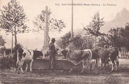 3205 COMBLOUX LA FONTAINE - Combloux