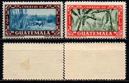 GUATEMALA - 1953 - Sugar Cane Field, Banana Trees - MH - Guatemala