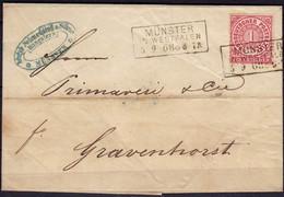 Münster-Gravenhorst NDP Brief V. Schmedding MS (6425 - Sin Clasificación