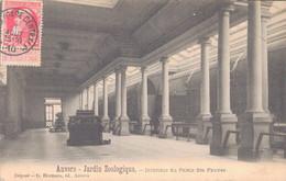 ANVERS / JARDIN ZOOLOGIQUE - INTERIEUR DU PALAIS DES FAUVES - Antwerpen