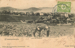 TURQUIE   CONSTANTINOPLE  Iles Des Princes - Turkey
